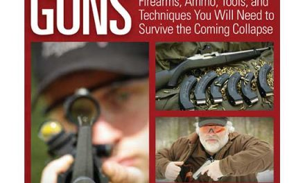 Why I Wrote Prepper Guns | Bryce M Towlsey