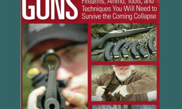 Prepper Guns | Bryce M Towlsey | Prepper Gun Book
